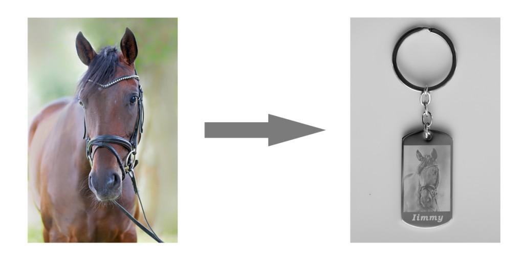 Pferd_Anhänger